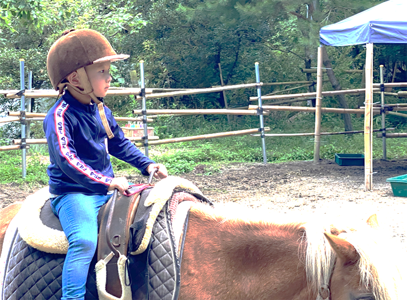 馬に乗る子ども